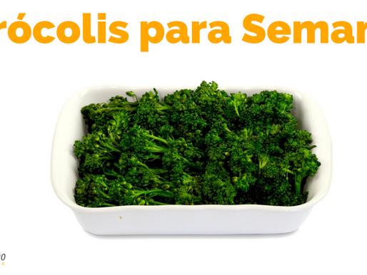 BRÓCOLIS: como preparar para ele ficar verdinho, temperar e armazenar para a semana