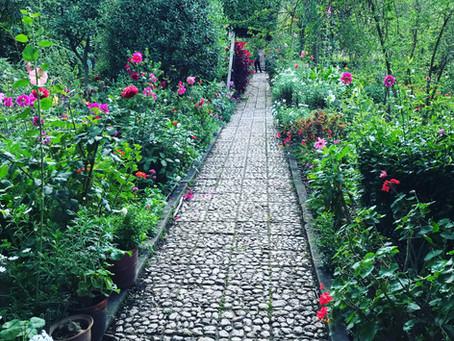 Pisac Botanical Garden