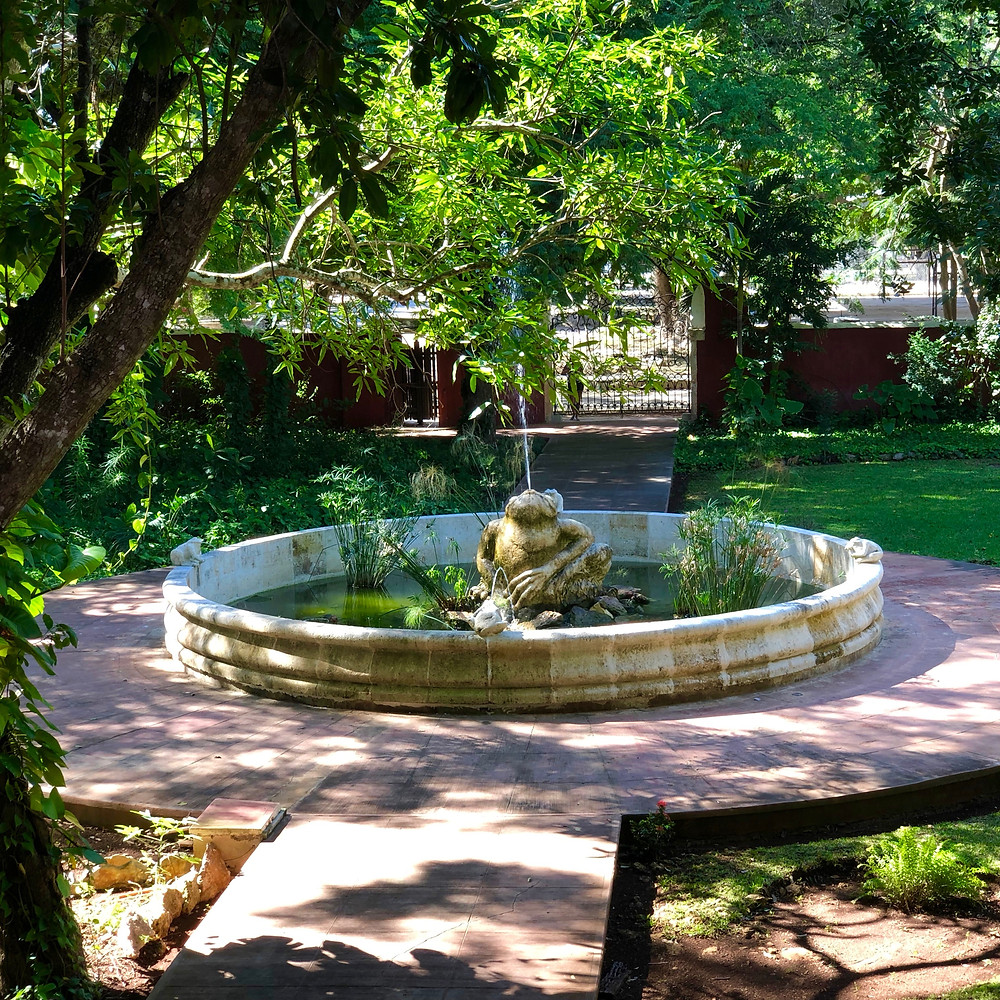 A frog fountain