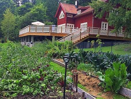 Gardening megalomania