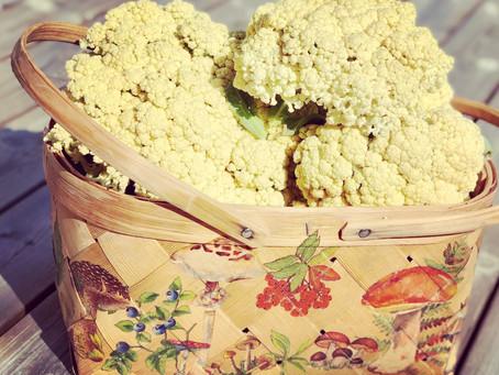Cauliflower Neckarperle