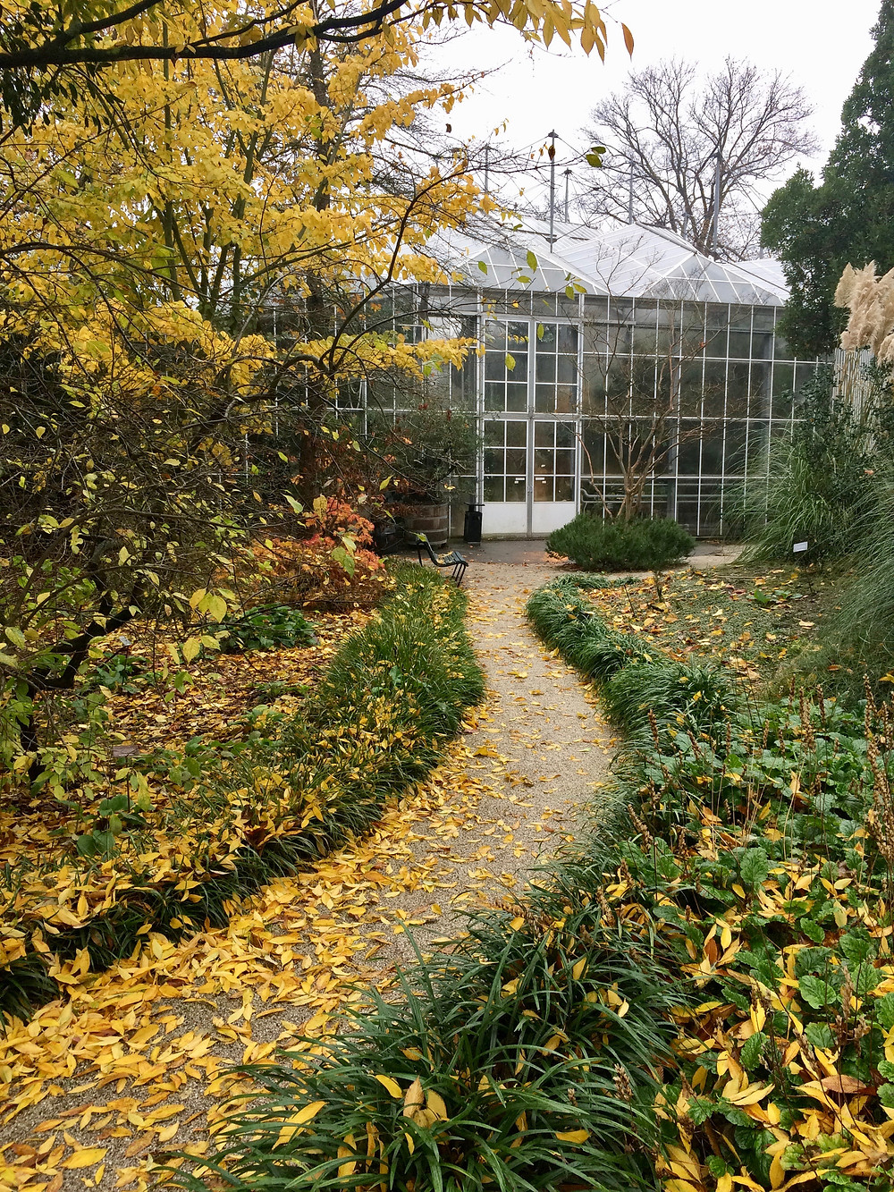 A curved path leads to the greenhouse