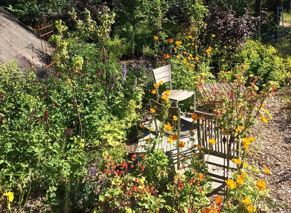 Wood chip mulch in the secret garden