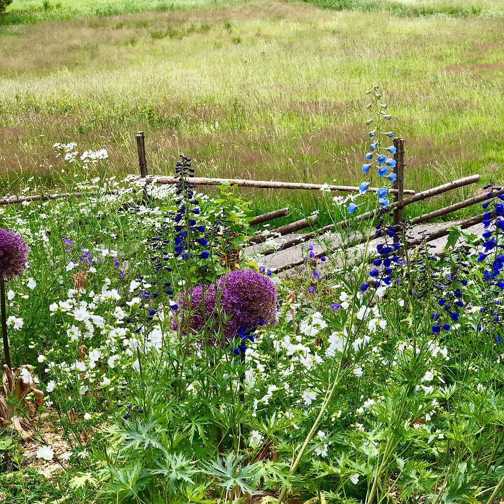 A rustic fence between the border and the road