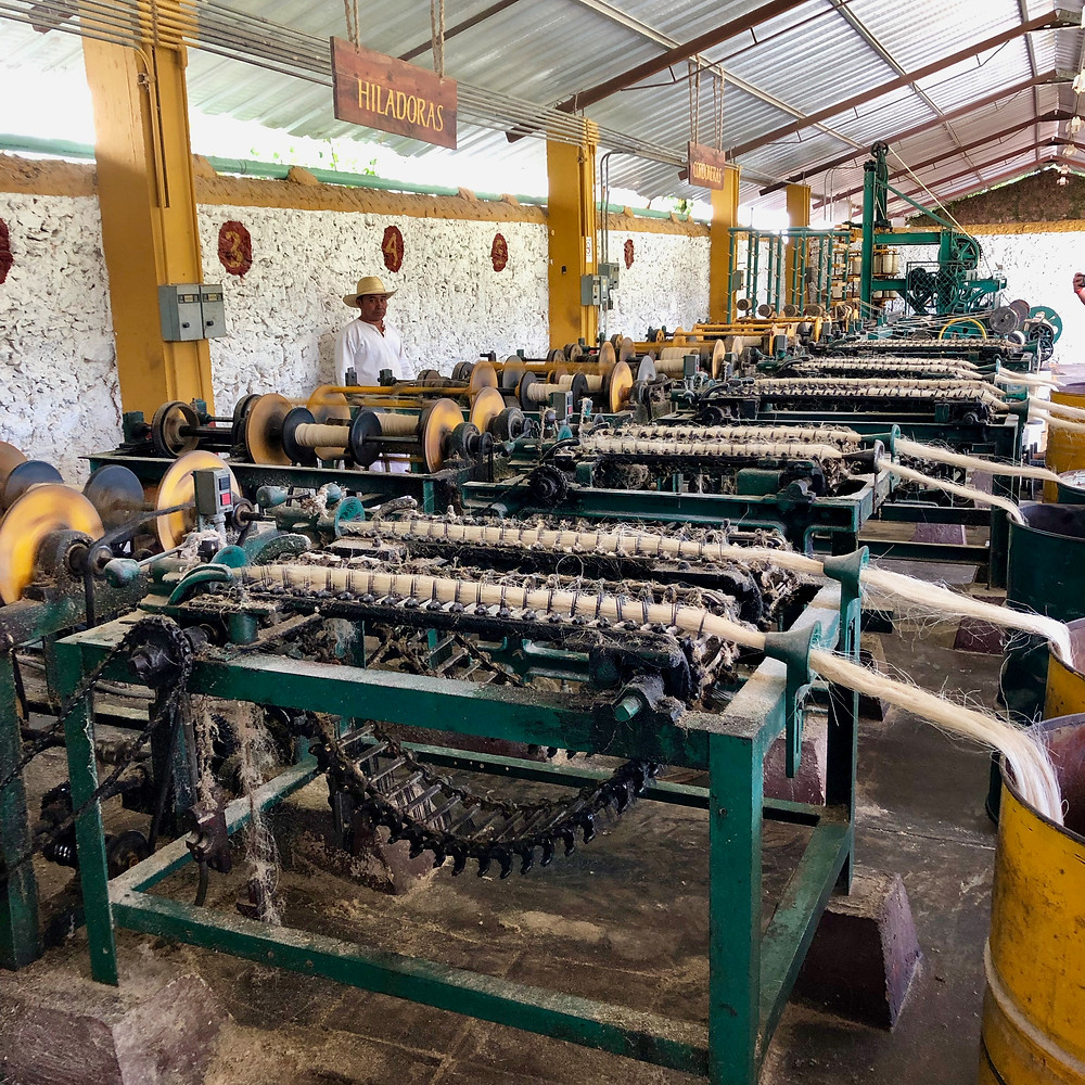 Sisal production machinery