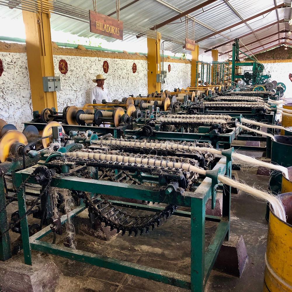 Sisal production machinery