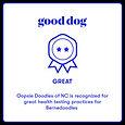 good dog.bernies.jfif