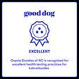 good.dog.excellent.labra.jpg