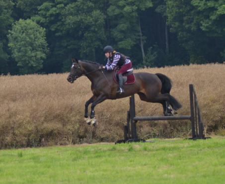 Badsworth Hunt Pony Club Camp 2015