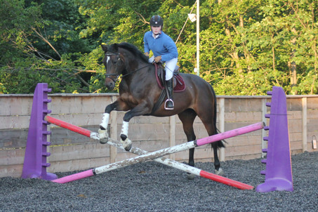 The Best Showjumping Lesson Ever!!!