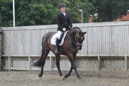 First Try at British Dressage. Disaster!