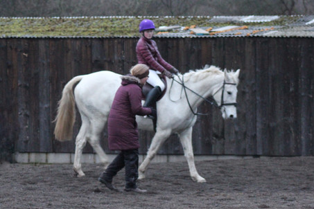 Show Jumping lesson with Ruth Baxter, sponsored by Stonehouse Solutions