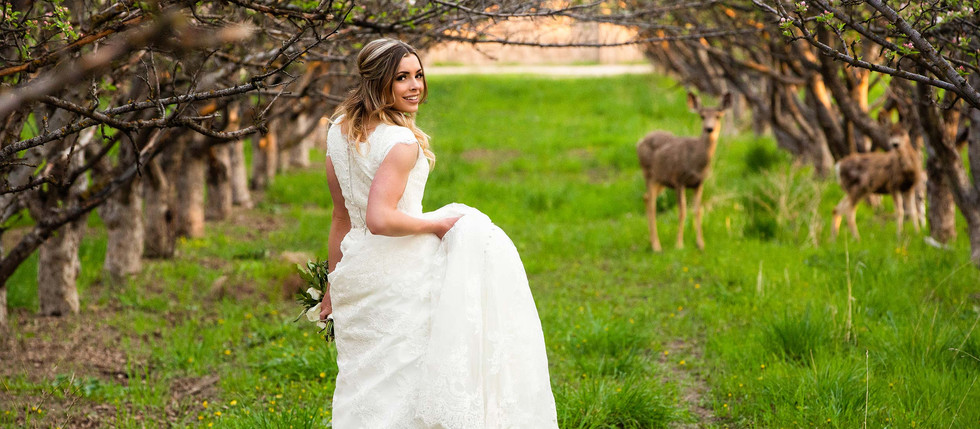 Spring Provo Grove Bridals with Whitney