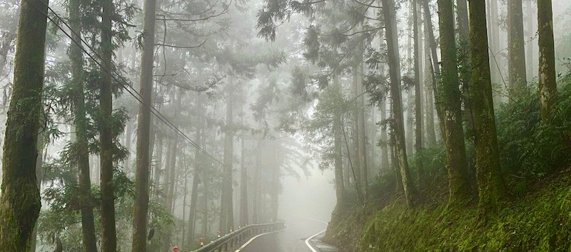 Taiwan Northern Traverse Fog.jpeg