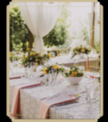 Molly & Roberts - Piedmont Garden Tent w