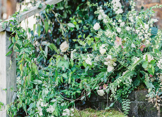 Southern Grace Romantic Photo Session at Barnsley Gardens