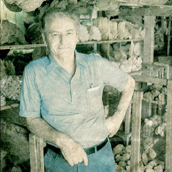 Stephen Katzaras