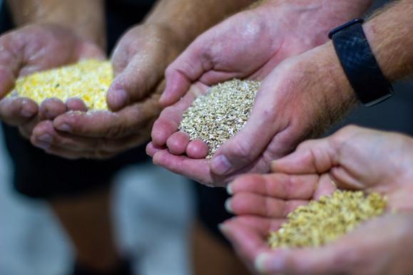 Tarpon Distillery Grains