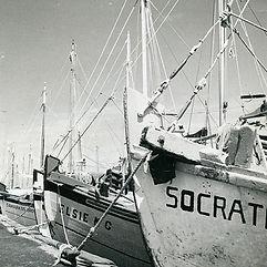 boats sq.jpg
