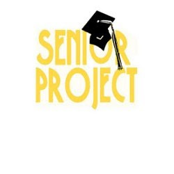 Thoughts on the Senior Project so Far