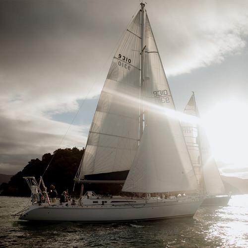hello-sailor-wine-race.jpg