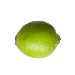 lime-fresh.png
