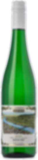 Giesen-Mosel-Riesling_2018-256x.png