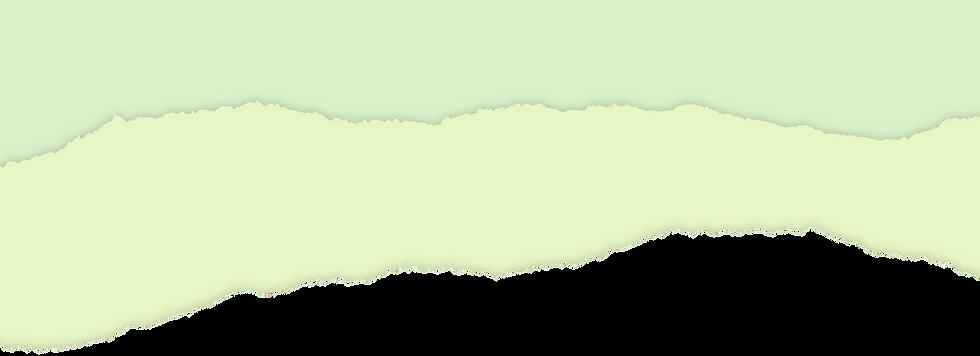 ASE-Zero-dicut-colour-artwork.png