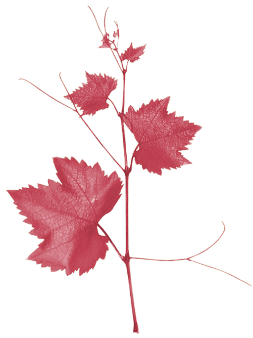 RedLeaves_440x800.png