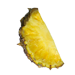 Pineapple-slice.png