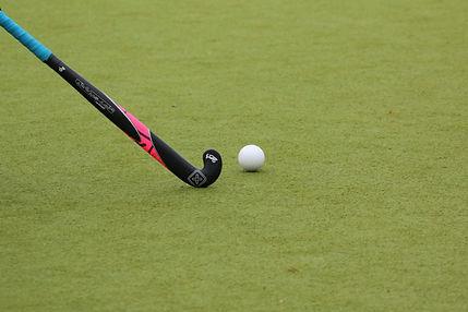 Hockey stick.jpg
