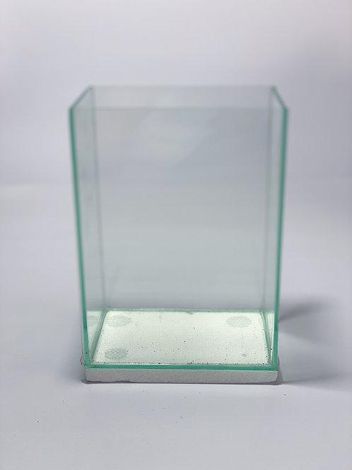 Betta Glass Tank