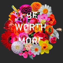 beworthmoreflowers