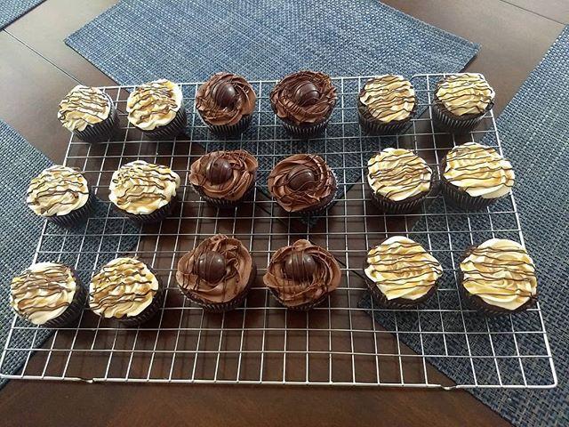 Gourmet cupcakes. Chocolate fudge cupcak