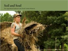 WILDWOODS FARM