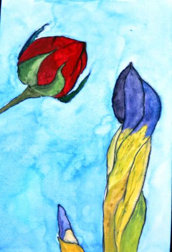 Iris and Rose.jpg