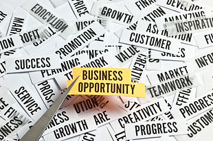 Business opportunity graphic