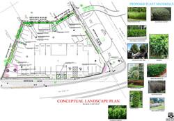 5555 Biscayne Blvd. Conceptual Landscape Plan