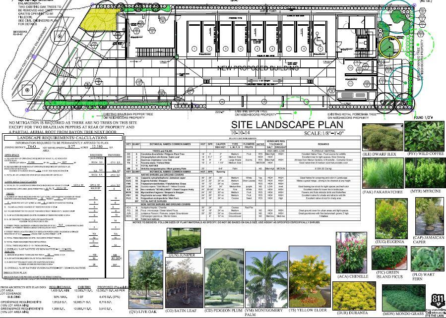 Apure. Site Landscape Plan