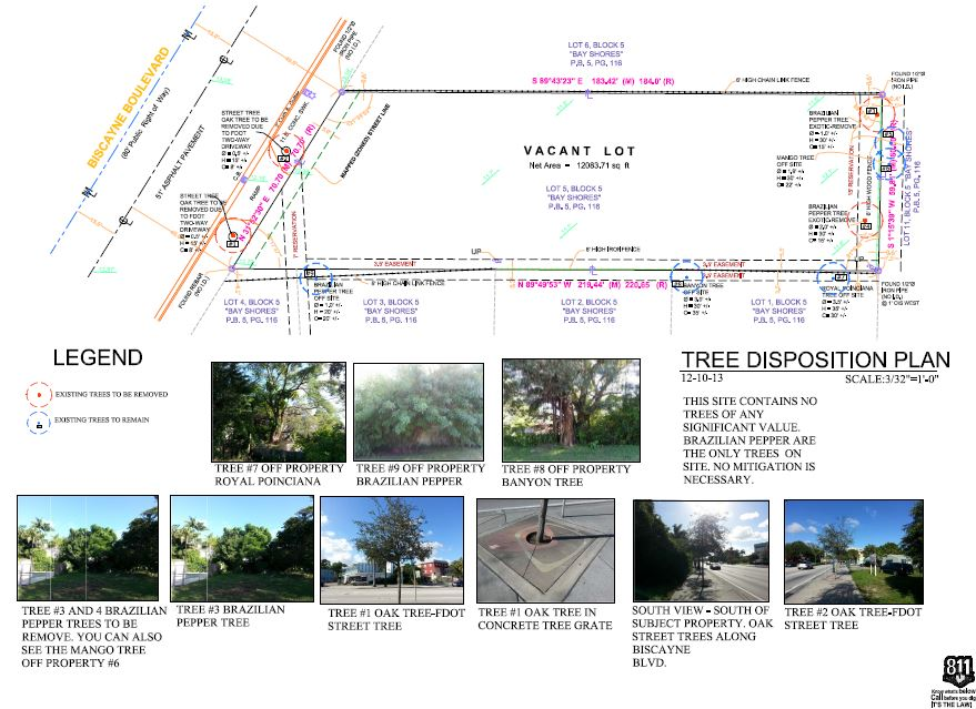 Apure. Tree Disposition Plan