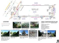 Apure. Tree Disposition Plan