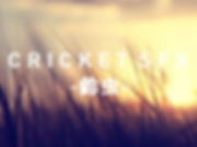 CRICKET SFX (鈴虫鳴き声素材集)イメージ