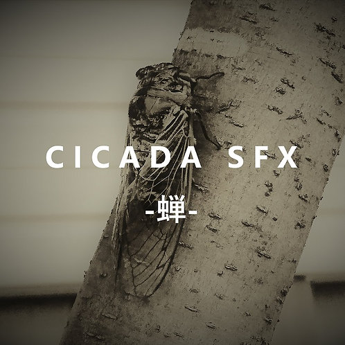 CICADA SFX -蝉- 蝉鳴き声素材集