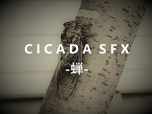 COMICAL ACCENT SFX (コミカル効果音素材集)