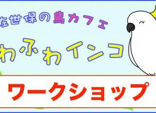 第1回ワークショップ@ふわふわインコ