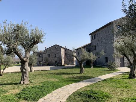 Besuch im biodynamischen Weingut I Cacciagalli im Roccamonfina