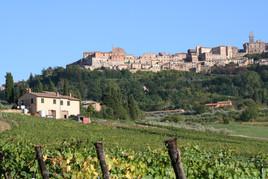 Sicht Montepulciano.JPG