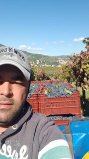TorreAOriente Giorgio.jpg