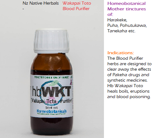 Nz Native Herbals - Wakapai Toto - Blood Purifier