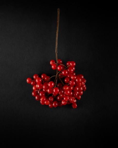 rote Beeren 4.jpg